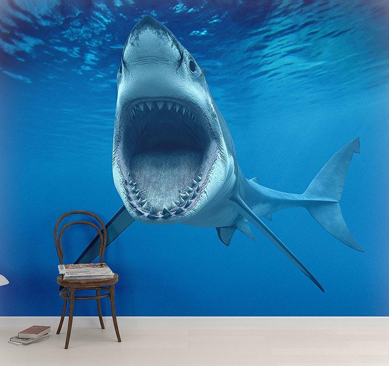 фотообои с акулой для телефона будет